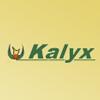 Logo Kalyx